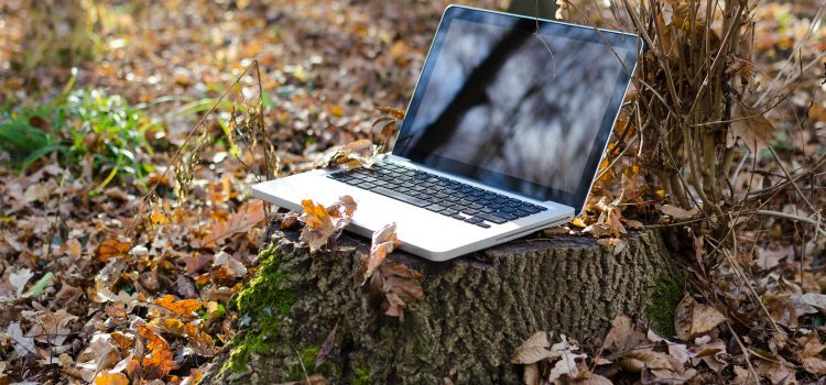10 Tipps für ein nachhaltigeres Büro